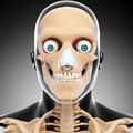 Front view of human head skeleton d art illustration Royalty Free Stock Photo