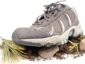 Front View Sneaker Royalty Free Stock Photography