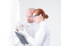 In front of a whiteboard side view one curious student and her teacher analyzing bunch mushrooms Royalty Free Stock Images
