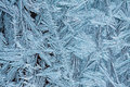 Frost patterns on a window crystallized Stock Image