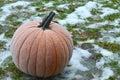Frost on Pumpkin