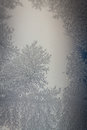 Frost on window glass Stock Photos