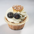 Frosted cupcake with sugared blueberries Royalty Free Stock Photo