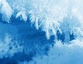 Frosty snow flakes closeup macro blue white background Royalty Free Stock Photography
