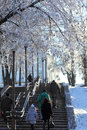 Frosty weather adults and children up the stairs on a city street in clear tree branches covered with frost people breathing white Royalty Free Stock Photography