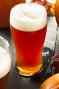 Frothy orange pumpkin ale ready to drink Stock Photos