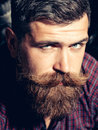 Frown bearded man hipster Royalty Free Stock Photo