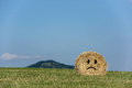 Frown straw bales with blue sky Stock Images