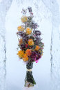 Frozen beautiful flowers with yellow roses in block of ice Stock Images