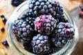 Frozen Blackberries Close Up Royalty Free Stock Photo