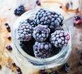 Frozen Blackberries Up Close Royalty Free Stock Photo