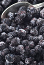 Frozen Blueberries Stock Photos