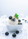 Frozen Blueberry Joghurt Stock Image