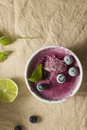 Frozen blueberry yoghurt Stock Photography