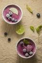 Frozen blueberry yoghurt