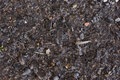 Frozen brown mulch and bark Royalty Free Stock Photo