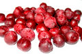 Frozen cherries. Royalty Free Stock Photo