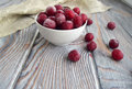 The frozen cherries Royalty Free Stock Photo