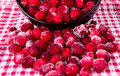 Frozen cranberries on a background  tablecloths Royalty Free Stock Image