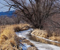 Frozen Creek Begins to Thaw Royalty Free Stock Photos