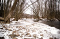 Frozen creek and small rocks a in a forest stones in water Royalty Free Stock Photos