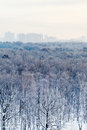 Frozen dawn over city park in winter moscow Stock Photography