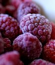 Frozen fruits Stock Photos