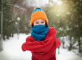 Frozen girl in winter park Stock Photography