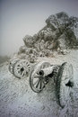 Frozen guns near shipka monument in bulgaria Royalty Free Stock Images