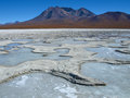 Frozen lagoon in eduardo avaroa andean fauna national reserve bolivia Stock Photo