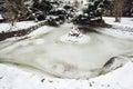 Frozen lake in winter Royalty Free Stock Photo