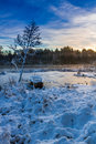 Frozen lake in winter at sunrise Royalty Free Stock Photography