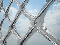 Frozen net Stock Image