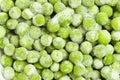 Frozen peas Royalty Free Stock Photo