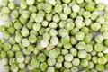 Frozen peas food backgrounds green Stock Photo