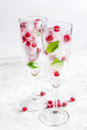 Frozen red berries in ice cubes with mint in glasses on stone background