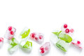 Frozen red berries in ice cubes on white background space for text top view Royalty Free Stock Photo