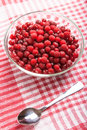Frozen red cranberry in bowl Royalty Free Stock Image