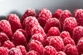 Frozen red raspberries arranged in rows as a background Royalty Free Stock Images