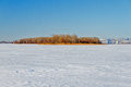 The frozen river with a dry cane on the island Royalty Free Stock Photo