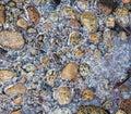 Frozen River Rocks Stock Photos
