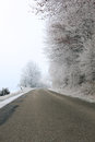 Frozen road Stock Photography
