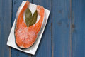 Frozen salmon on white dish Royalty Free Stock Photo