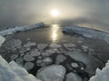 Frozen sea arctic svalbard winter landscape fjord Stock Images