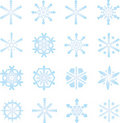 Frozen snowflakes Royalty Free Stock Photo