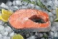 Frozen steak of salmon on ice cubes Royalty Free Stock Photo