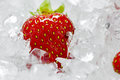 Frozen Strawberries with crushed ice Royalty Free Stock Photo