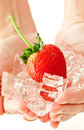 Frozen strawberry Stock Photography