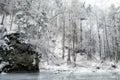 Frozen stream in winter forest