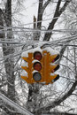 Frozen street light Royalty Free Stock Photos